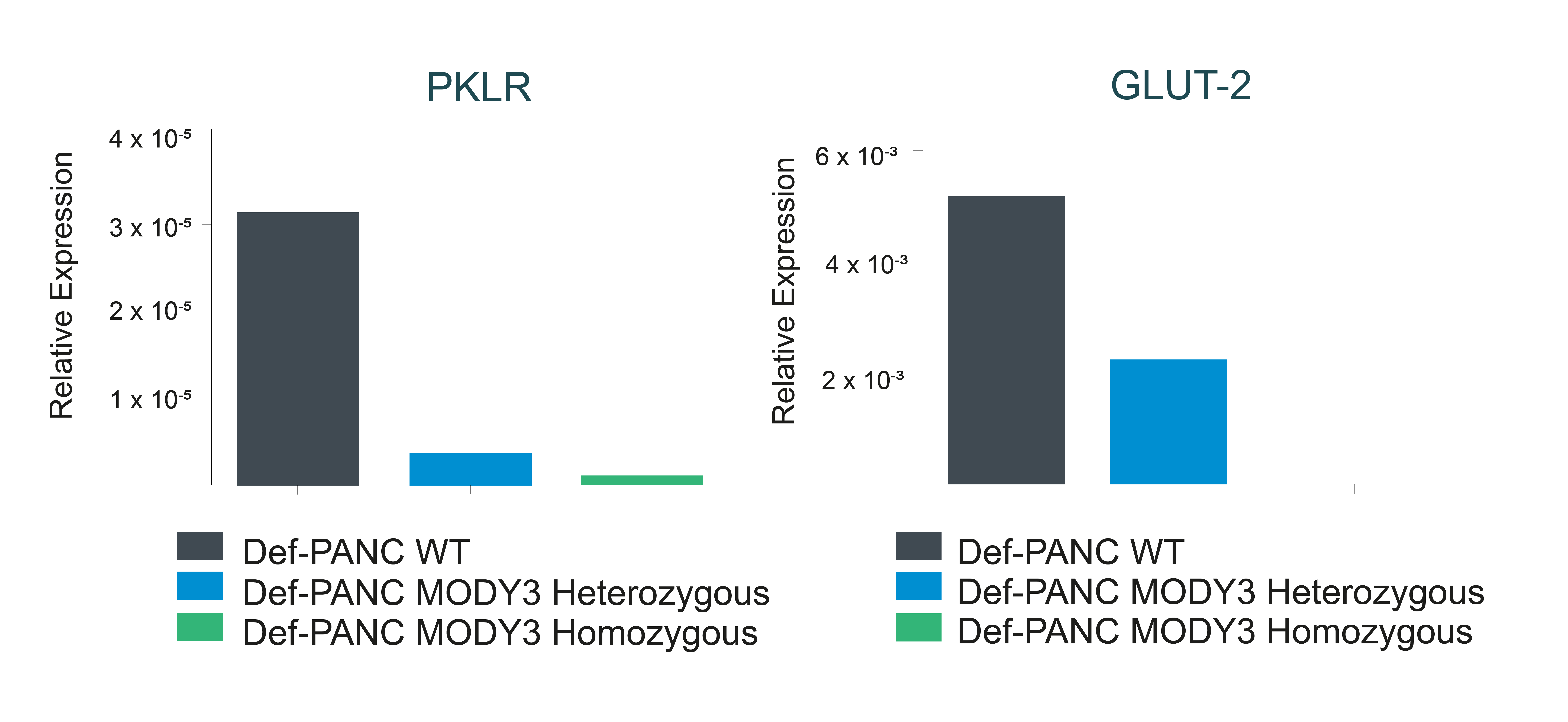GLUT2 and PKLR expression analysis